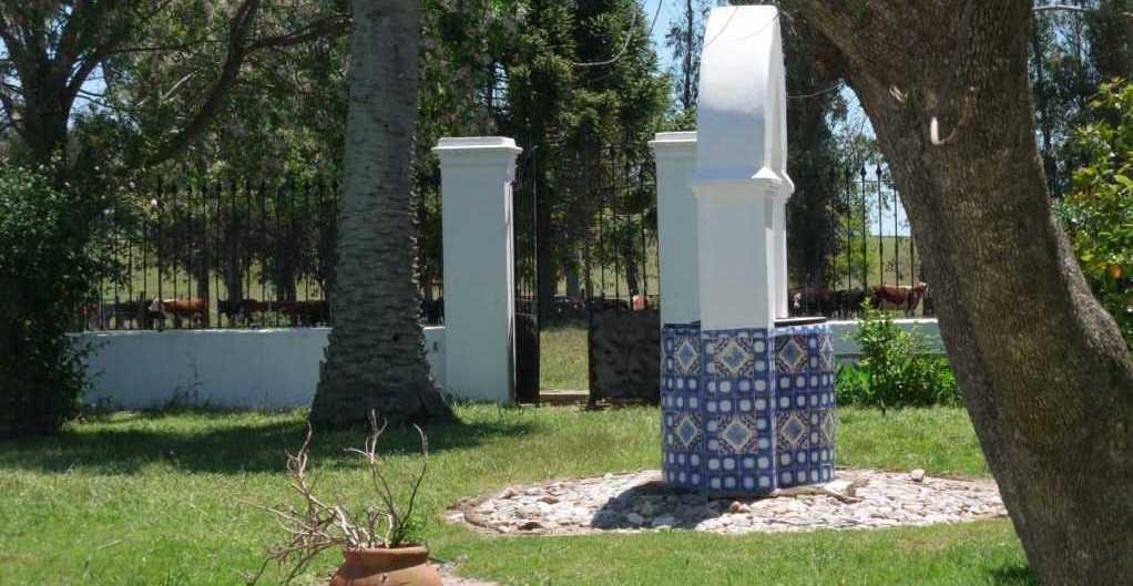 courtyard cistern cattle