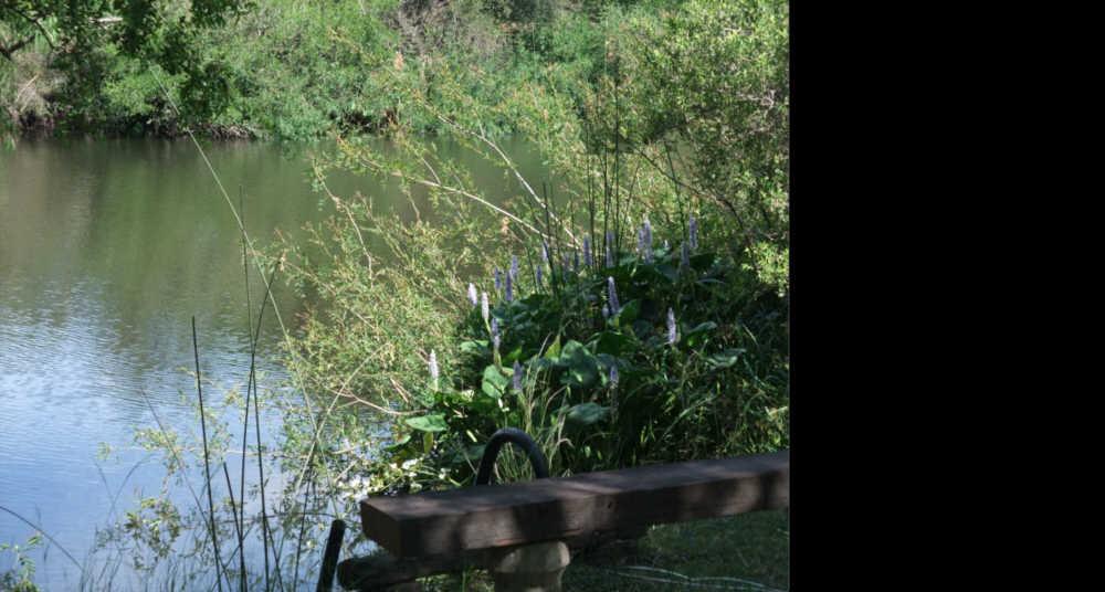 lakeside Estancia San Eugenio